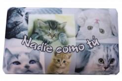"Cojín gatos viscosos ""nadie como tu"""